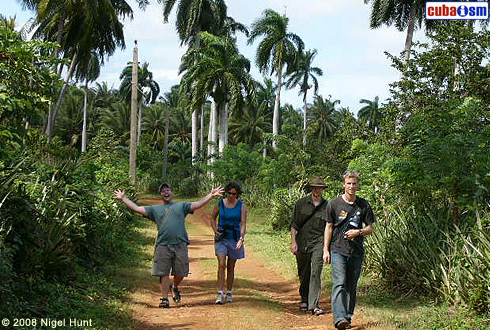 Baracoa Trails
